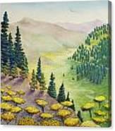 Hillside Of Yarrow Flowers With Pine Tress Canvas Print