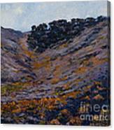 Hillside Sage Canvas Print
