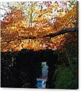 Hillwood Mansion Fall Garden Canvas Print
