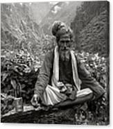 Himalayan Canvas Print