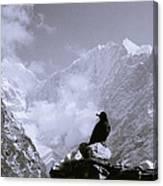 Himalayan Freedom Canvas Print
