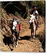 Himalayan Horseman - Nepal Canvas Print