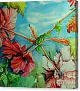 Hiroko's Hibiscus 3 Canvas Print