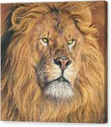 His Majesty - Detail Canvas Print