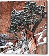 His Mountain Canvas Print