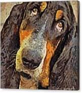 His Soft Sad Look Canvas Print