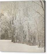 Hoar Frost On A Winters Day Canvas Print