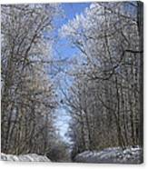 Hoar Frost On Campground Road Canvas Print