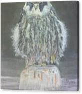 Hobby Canvas Print