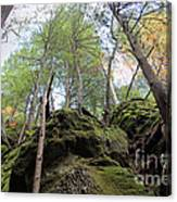 Hocking Hills Moss Covered Cliff Canvas Print
