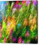 Hoedown Canvas Print
