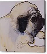 Hogarth Canvas Print