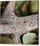 Holey Driftwood Canvas Print