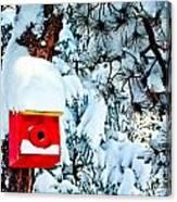 Holiday Birdhouse Canvas Print