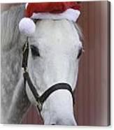 holiday horse Friendly Canvas Print