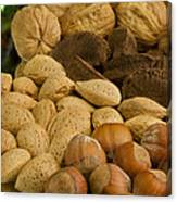 Holiday Nuts Canvas Print