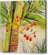 Holiday Palm Canvas Print