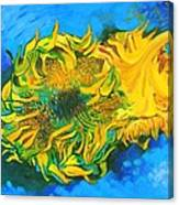Homage To Dear Master Van Gogh Two Cut Sunflowers Canvas Print