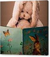 Home For A Bunny 1 Canvas Print