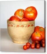 Home Grown Tomatoes II Canvas Print