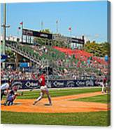 Home Run Or Struck Out Canvas Print