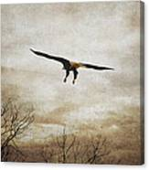 Home Safely Canvas Print