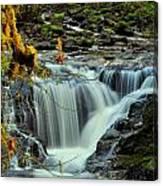 Homestead Falls Canvas Print