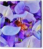 Honey Bee Cling Canvas Print