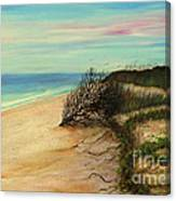 Honeymoon Island Florida Canvas Print