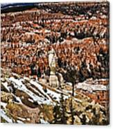 Hoodoos At Bryce Canvas Print
