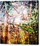 Hoosier Country Opus 1 Canvas Print