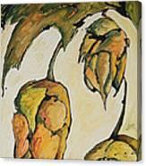 Hop Harvest Canvas Print