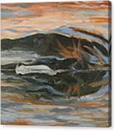 Horizontal Horse Canvas Print