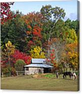 Horse And Barn In The Fall 3 Canvas Print