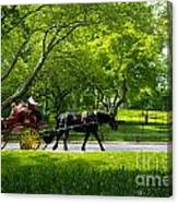 Horse And Carriage Central Park Canvas Print