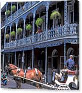 Horse And Carriage In New Orleans Canvas Print