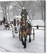 Horse Carriages In Snowy Park Canvas Print