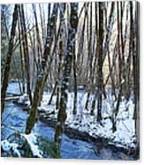 Horse Creek No. 2 Canvas Print
