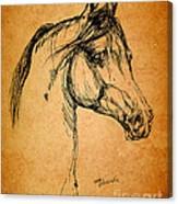 Horse Drawing Canvas Print