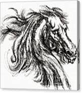 Horse Face Ink Sketch Drawing - Inventing A Horse Canvas Print