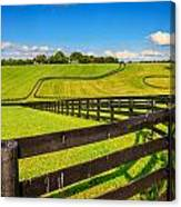 Horse Farm Fences Canvas Print