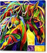 Horse Hues Canvas Print