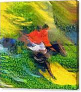 Horse Hurdles Canvas Print