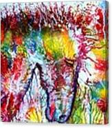Horse In Abstract Canvas Print