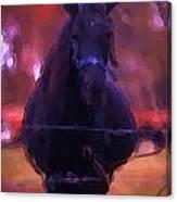 Horse In Autumn Light Canvas Print