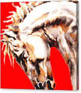 E   P   I   C   U   S    In Red Canvas Print