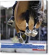 Horse Jumping Canvas Print