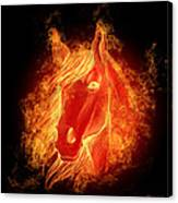 Horse On Fire  Canvas Print