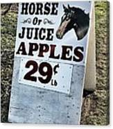 Horse Or Juice Apples Canvas Print