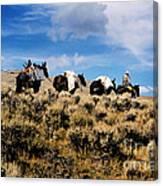 Horse Pack   #003 Canvas Print